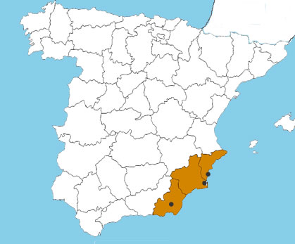 Lawyers in Torrevieja, San Javier and Vera
